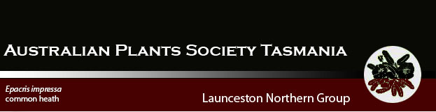Australian Plants Society Northern Tasmania Launceston